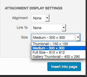 Custom image sizes in dropdown