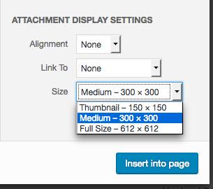 Default image sizes in dropdown